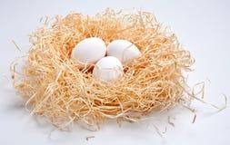 Eier auf Heu Lizenzfreies Stockbild