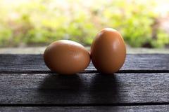 Eier auf Holz lizenzfreies stockfoto