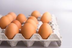 Eier auf Pappbehälter Lizenzfreie Stockfotografie