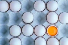 Eier auf Pappbehälter Stockfotos