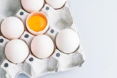 Eier auf Pappbehälter Stockbild