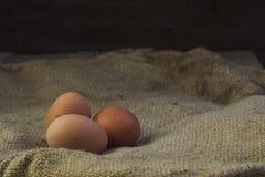 Eier auf Sackleinenhintergrund Lizenzfreie Stockfotos