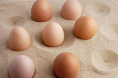Eier auf Sand. Stockfoto