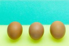 Eier auf Schwamm Stockbilder