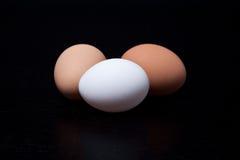 Eier auf schwarzem Hintergrund Lizenzfreies Stockfoto