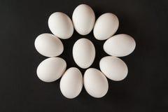 Eier auf schwarzem Hintergrund Lizenzfreie Stockbilder