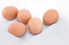 Eier auf weißem Hintergrund Stockfotos