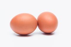 Eier auf weißem Hintergrund Stockbild