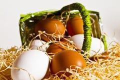 Eier aus dem Korb 4 heraus Stockfoto