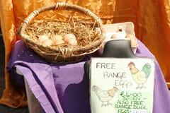 Eier aus Freilandhaltung Lizenzfreie Stockfotografie