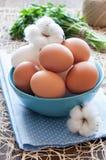 Eier in den blauen Schüssel- und Baumwollblumen Stockfotos