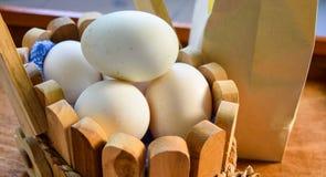 Eier der Ente, biologisches Lebensmittel Lizenzfreies Stockfoto