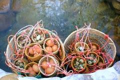 Eier der heißen Quelle Stockfotografie