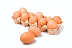 Eier in der Pappe lizenzfreie stockfotografie