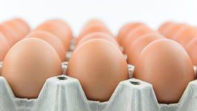 Eier in der Reihe auf Behälter Stockbild