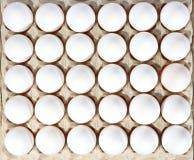Eier in der Verpackung Lizenzfreie Stockbilder