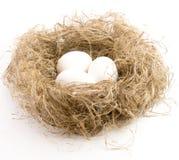 Eier der weißen Farbe in einem Nest Lizenzfreie Stockbilder