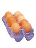 Eier Dutzend in einem Potenziometer. Getrennt. Stockfoto