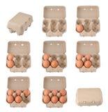 Eier in einem Ei-Karton Stockfotos