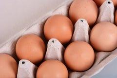 Eier in einem Kartonkasten Stockfoto