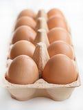 Eier in einem Kartonkasten Stockbild