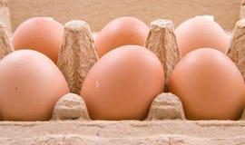 Eier in einem Kasten Stockbilder
