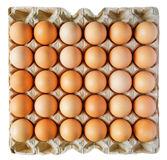 Eier in einem Kasten lizenzfreies stockfoto