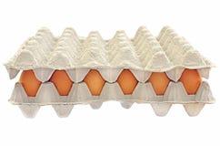 Eier in einem Kasten Stockfotografie
