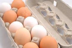Eier in einem Kasten Stockfoto
