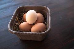 Eier in einem Kasten auf einem braunen hölzernen Hintergrund Lizenzfreie Stockfotografie