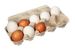 Eier in einem Kasten auf einem weißen Hintergrund Lizenzfreies Stockfoto