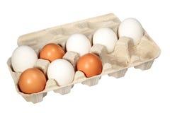 Eier in einem Kasten auf einem weißen Hintergrund Lizenzfreies Stockbild