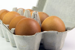 Eier in einem Kasten auf einem weißen Hintergrund Stockfotos