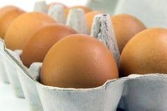 Eier in einem Kasten auf einem weißen Hintergrund Stockfotografie