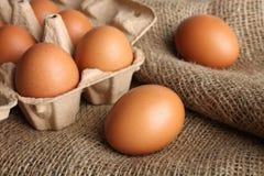 Eier in einem Kasten für Eier Stockbild