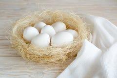 Eier in einem Nest Stockfotografie