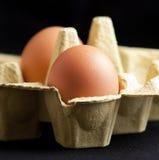Eier in einem Paket Stockbild