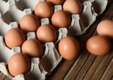 Eier in einem Papierbehälter Stockfotografie