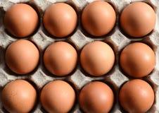 Eier in einem Papierbehälter Stockbilder