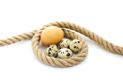 Eier in einem Seil Lizenzfreie Stockbilder