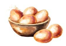 Eier in einer hölzernen Schüssel Gezeichnete Illustration des Aquarells Hand lokalisiert auf weißem Hintergrund Lizenzfreie Stockfotos