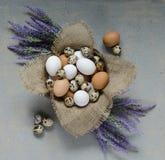 Eier in einer hölzernen Schüssel und in violetten Blumen auf dem Tisch Lizenzfreie Stockfotos