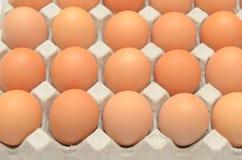Eier in einer Kartonnahaufnahmeansicht Stockfoto