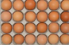 Eier in einer Kartonnahaufnahmeansicht Lizenzfreie Stockbilder
