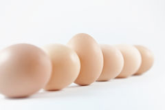 Eier in einer Reihe Stockfoto