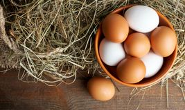 Eier in einer tiefen Schüssel Lizenzfreie Stockfotos