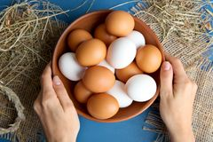 Eier in einer tiefen Schüssel Lizenzfreie Stockbilder