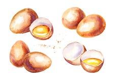 Eier eingestellt Gezeichnete Illustration des Aquarells Hand, lokalisiert auf weißem Hintergrund Lizenzfreies Stockfoto