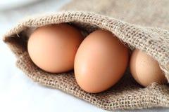 Eier. Getrennt auf weißem Hintergrund Lizenzfreies Stockbild
