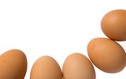 Eier getrennt auf weißem Hintergrund Stockfotografie